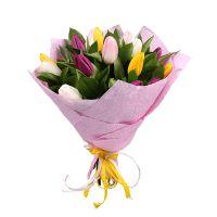 Bouquet 15 multi-colored tulips