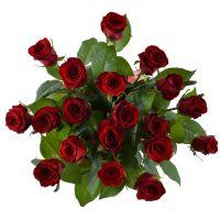 Bouquet 19 roses