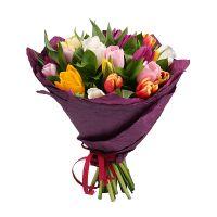 Bouquet 25 multi colored tulips