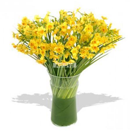 Bouquet 49 daffodils