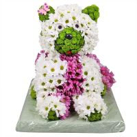Bouquet Flower cat