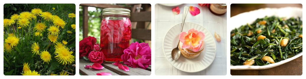 Dishes of Flowers: 5 Little Tricks