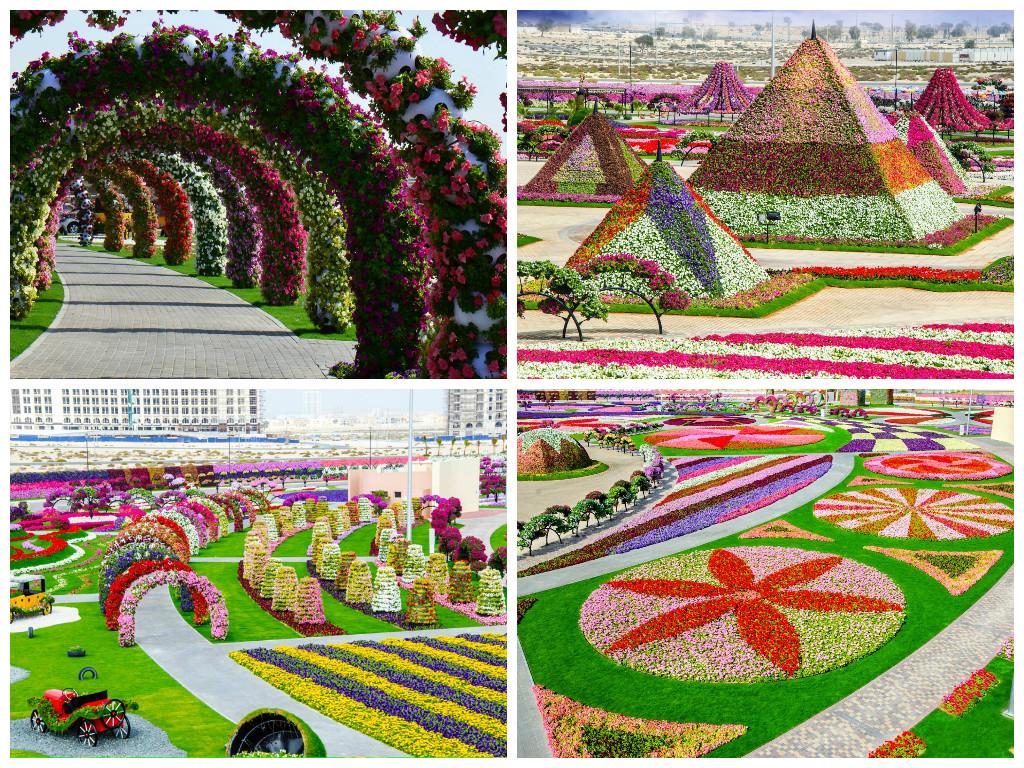 Traveling Around Largest Flower Plantations