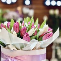Tulip mania - why were tulips more expensive than gold?